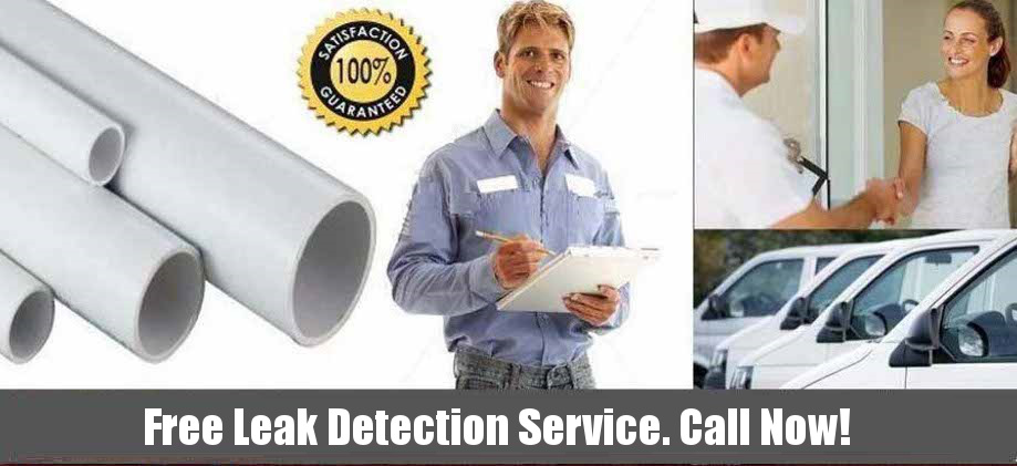 TSR Trenchless Services Free Leak Detection